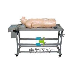 """""""康为医疗""""高级综合穿刺术与叩诊检查技能训练模拟人"""