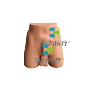 """""""康为医疗""""新型输精管结扎训练操作模型"""