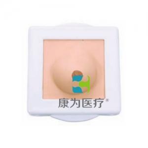 """""""康为医疗""""乳房检查模型,纤维腺瘤和乳腺癌病变模型"""