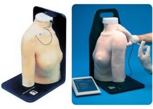 肩关节腔内注射模型,产品编号:30010