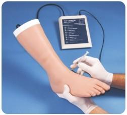 足部及脚踝关节注射模型,产品编号:30100