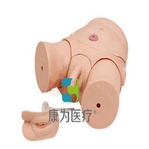 """""""康为医疗""""男女两性互换导尿训练模型"""