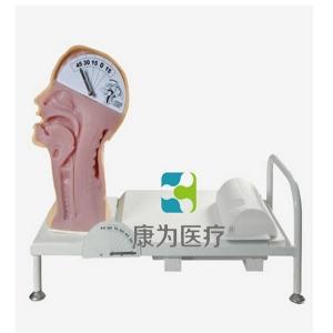 """""""康为医疗""""吞咽机制演示训练模型"""