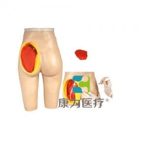 """""""康为医疗""""高级臀部肌肉注射与解剖结构模型"""