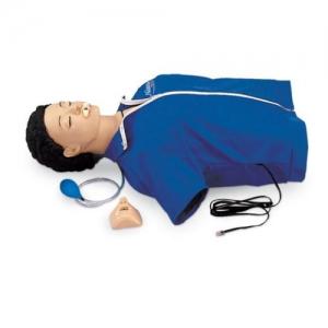 德国3B Scientific®生命救护模型,带电子显示装置