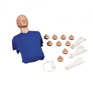 德国3B Scientific®心肺复苏躯干模型