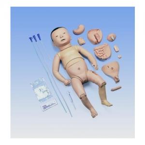 德国3B Scientific®带有日本婴儿脸部特征的新生儿护理模型