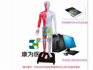 """""""康为医疗""""光电感应键控人体针灸穴位发光模型(标准款)"""