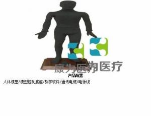 """""""康为医疗""""华示牌蒙医MAW-170A多媒体按摩点穴电子人体模型(中文版本,粤语版本,英语版本,蒙古语版本)"""