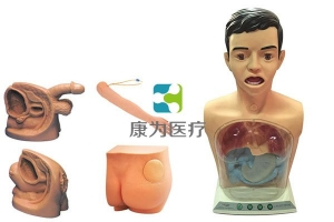 """""""康为医疗""""高级新型基础护理实习操作模型(五部件)"""