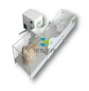 颅内动脉介入模拟器,颅内动脉介入培训模型,颅内动脉介入手术模拟系统