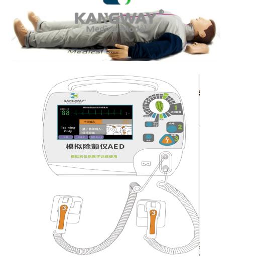 EM3003成人心肺复苏电除颤训练及考核系统